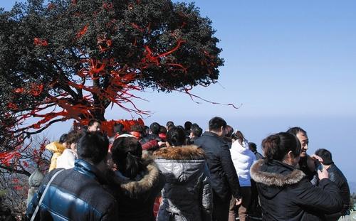 春节初五到武当山,询问武当山景区内住宿问题!